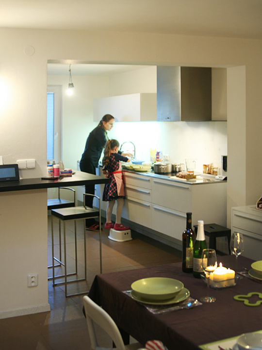 plan 3 kitchens / Mrs. Nedvedova / Happy New Year Card (Pour Féliciter 2016)