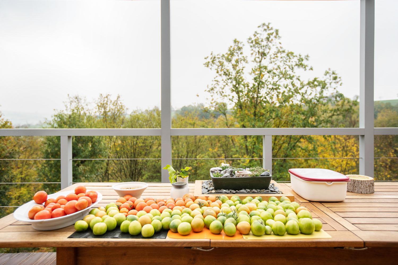 plan 3 kuchyně / Загородная дача Osvětimany / Кухня на природе
